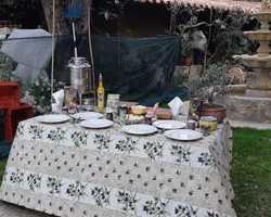 L'Oliveraie Chez Grec - Colomars - L'Oliveraie de la Sirole