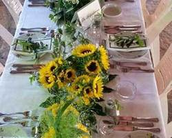 L'Oliveraie Chez Grec - Colomars - Réception et banquet